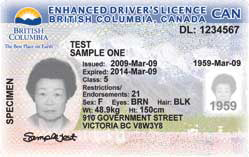 British Columbia Licences Driver's Licences Driver's British British Driver's Columbia Columbia