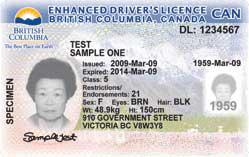 Licences Driver's British Columbia Driver's British Licences Columbia British